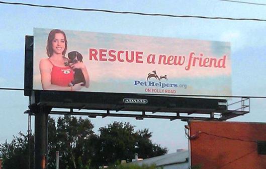 Kelsey Pet Helpers billboard