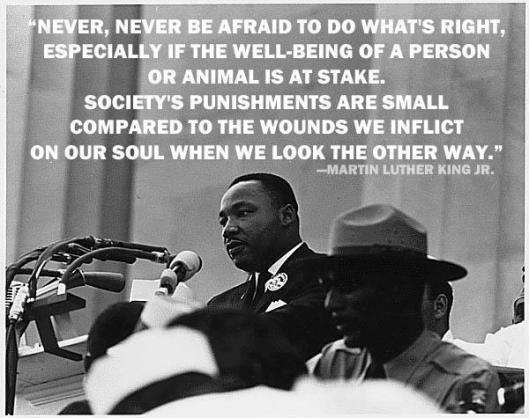 mlk never never be afraid to do what's right, inspirational quotes