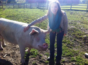 visit a farm sanctuary