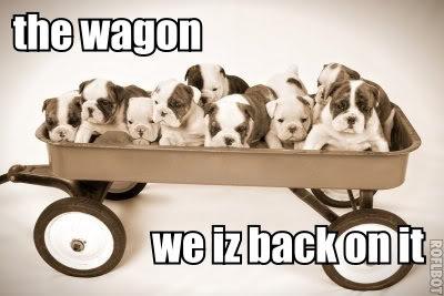 on-the-wagon.jpg