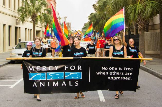Mercy for Animals in Charleston Pride Parade